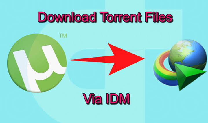 How to Download Torrent Files with IDM, download torrent files with idm, idm torrent, torrent to idm, torrent file to idm